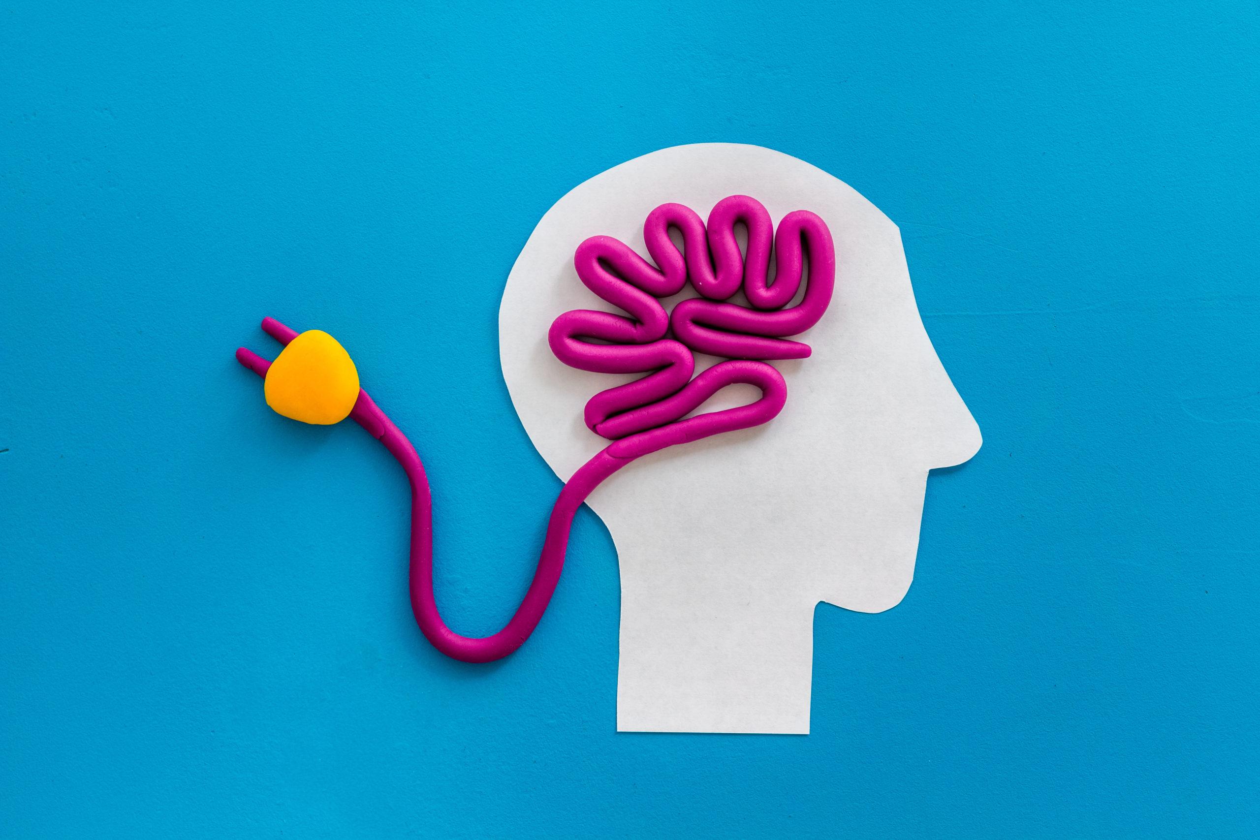 Women's Brain Initiative Seminar